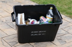New Waste Collection 02.jpg
